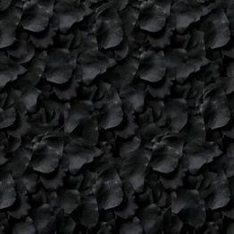 black-petals